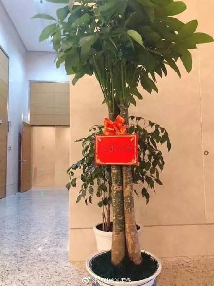 Sao Trung cười ngất với quà từ 'fan nghèo': Đặng Luân và bánh nướng, Trần Vỹ Đình ăn no rau, nấm