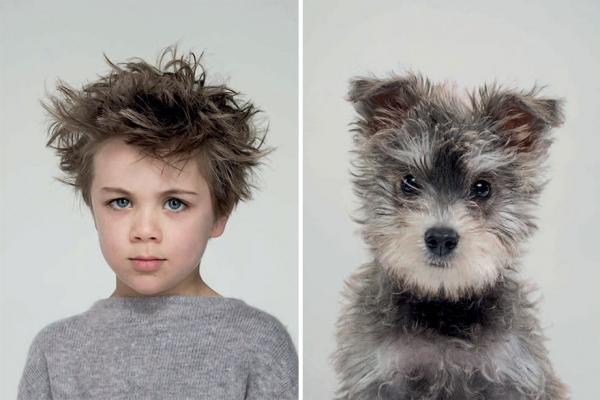 Những bức hình dưới đây là minh chứng rõ ràng nhất cho câu 'Chủ nào chó nấy'