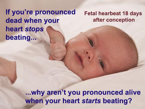 'Sự sống bắt đầu từ khi nào?' cùng những tranh cãi không hồi kết về quyền sống cho thai nhi