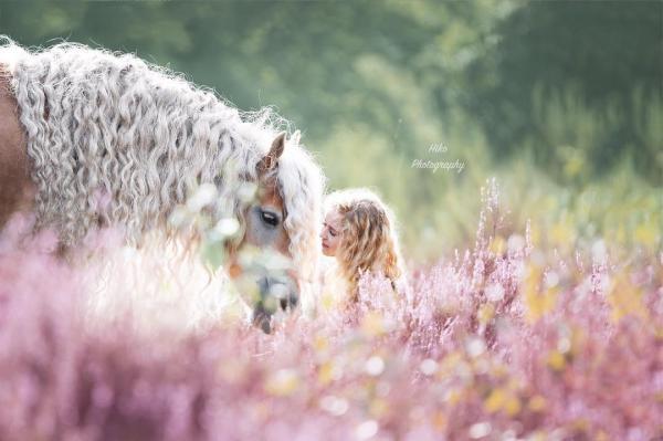 Ngắm nhìn nàng ngựa sở hữu mái tóc đẹp quý phái như Rapunzel