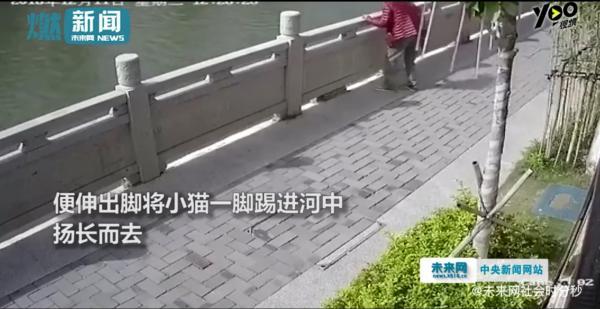 'Ngứa chân' đá chú mèo đang sưởi nắng xuống sông, gã đàn ông bị cư dân mạng lên án kịch liệt