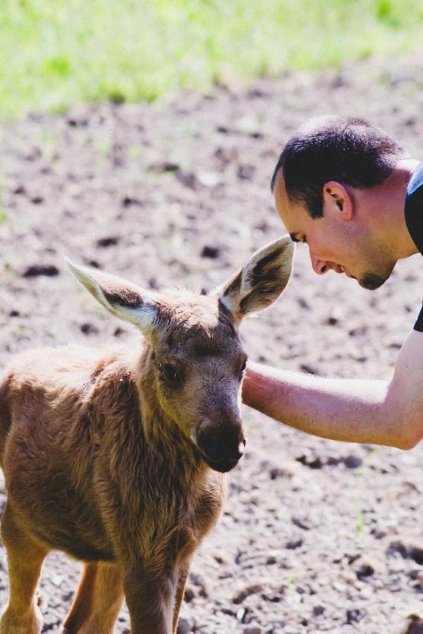 13 con vật tình nghĩa không quên ơn những người đã từng cứu giúp mình