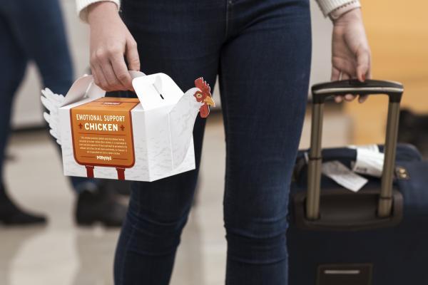 Hãng Popeyes ra mắt 'chú gà hỗ trợ cảm xúc' dành cho những hành khách căng thẳng khi đi máy bay