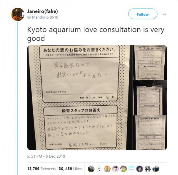 Thủy cung Kyoto tư vấn thoát ế cho cậu trai 16 tuổi: Khoa học cả nhưng nghe cứ sai sai thế nào