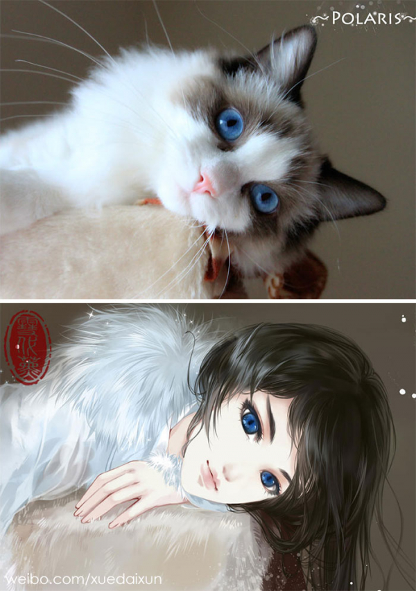 Chó mèo hóa thân thành 'nam thanh, nữ tú' dưới nét vẽ của họa sĩ Trung Quốc