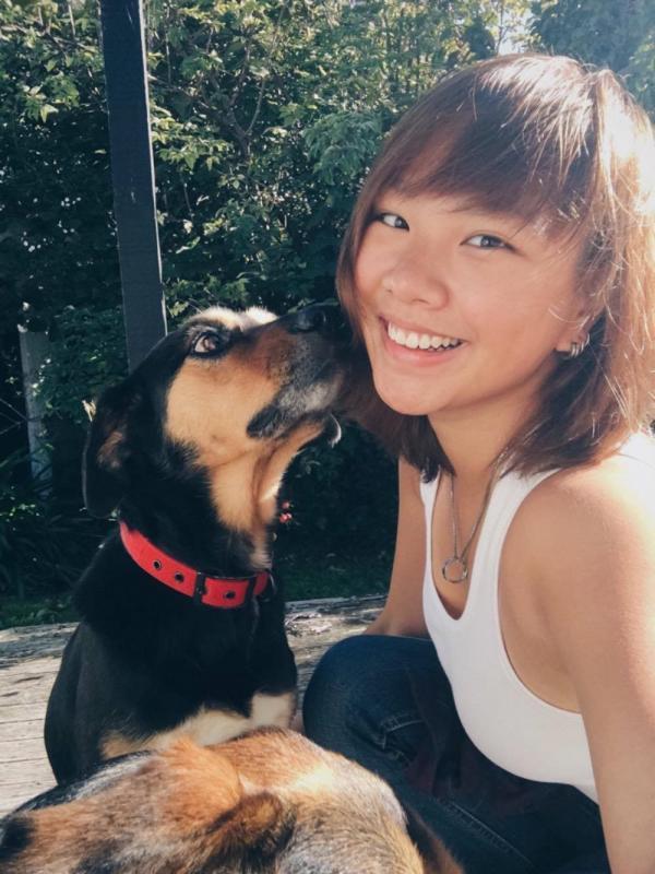 'Tôi khóc mỗi ngày vì phải trợ tử cho động vật': Bác sĩ thú y tiết lộ lý do họ bị trầm cảm dẫn đến tự sát
