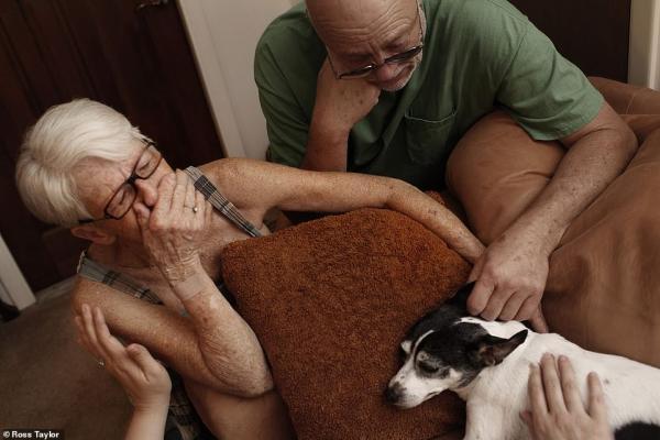 Đau nhói lòng những giây phút cuối cùng thú cưng được nhìn thấy chủ của mình