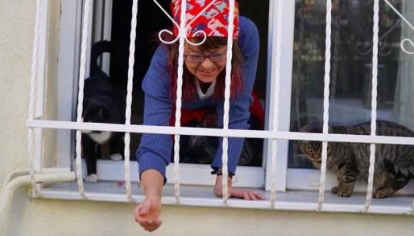 Chị gái nhân hậu xây cầu thang nhỏ cho mèo hoang vào nhà tránh rét