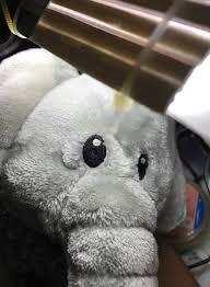 Những lần sasaeng fan khiến K-Pop chìm trong ác mộng: Bắt cóc, rao bán quần lót, gửi huyết thư