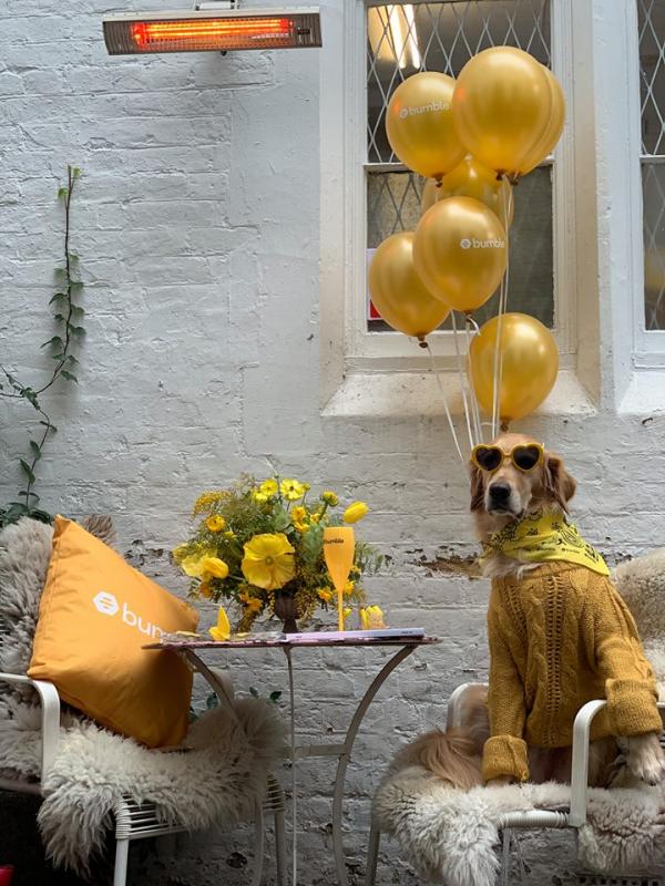 'Cặp đôi' cô chủ Ursula và chú chó Hugo khiến phe độc thân nhói tim trong dịp Valentine