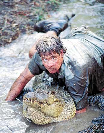 PETA chỉ trích Google vì tôn vinh nhà sinh vật học quá cố Steve Irwin