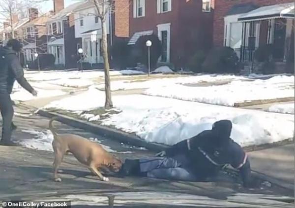 Clip kinh hoàng: Chó pitbull cắn xé người đi đường suốt 6 phút dù bị đánh bằng cả chổi và thùng rác