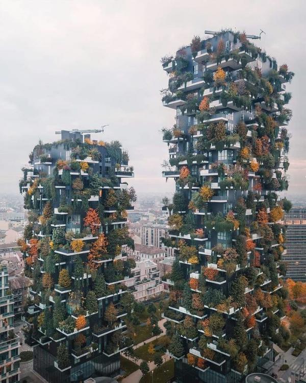 20 bức ảnh thiên nhiên đỉnh nhất từ cuộc thi nhiếp ảnh trên Instagram của National Geographic