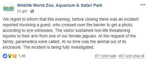 Bất chấp nguy hiểm leo vào chuồng thú hoang dã selfie và cái kết đau thương