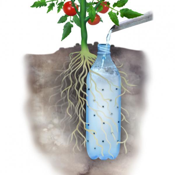 Bỏ túi 11 cách tái chế đồ nhựa bỏ đi thành những vật dụng siêu hữu ích