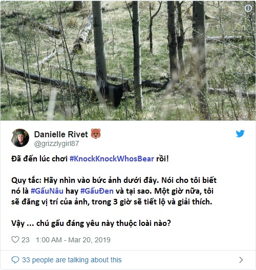 Kiểm tra kiến thức về động vật bằng những thử thách này trên Twitter