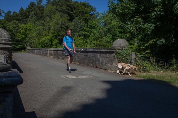 Vén màn bí ẩn về cây cầu ma ám của Scotland: Chó cứ đến nơi là tự sát?