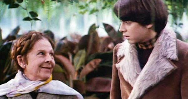 Harold và Maude - Mối tình lập dị và kỳ lạ giữa chàng trai trẻ và bà lão già nua