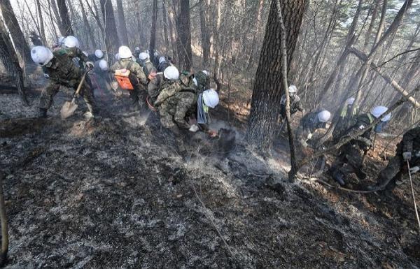 Quyên góp 1 tỷ VNĐ cho nạn nhân vụ cháy rừng, MC quốc dân Yoo Jae Suk vẫn bị chỉ trích là keo kiệt