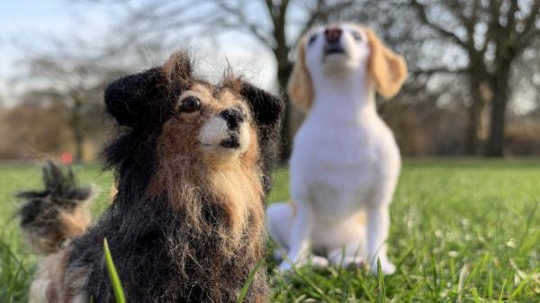 Những chú chó được đưa vào trường học ở Anh giúp học sinh giảm căng thẳng, lo lắng