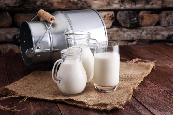 Thành phần chủ yếu của sữa là nước và protein, tại sao nó lại được tung hô như hiện nay?