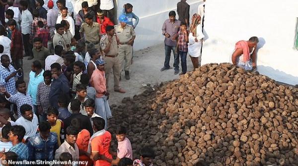 Kỳ lạ ngôi làng tại Ấn Độ ném phân bò vào nhau để cầu chúc sức khoẻ và thịnh vượng