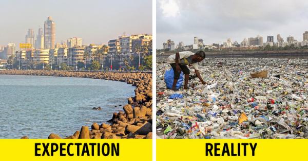 21 bức ảnh cho thấy sự thờ ơ 'vô số tội' của loài người đối với môi trường hiện nay