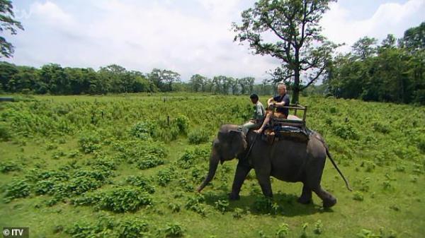 Nhà bảo trợ động vật gây phẫn nộ khi đạp lên vòi và kéo tai để cưỡi voi trên show thực tế của mình