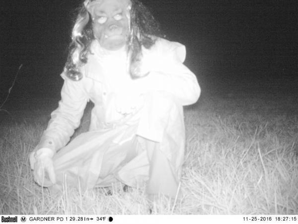 Cảnh sát đặt camera để tìm tung tích sư tử núi và cái kết còn hài hơn tưởng tượng