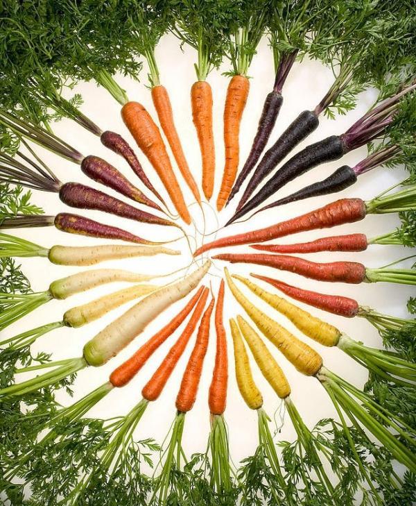 Bạn có biết các loại rau củ quả hiện giờ khác một trời một vực so với tổ tiên của chúng?