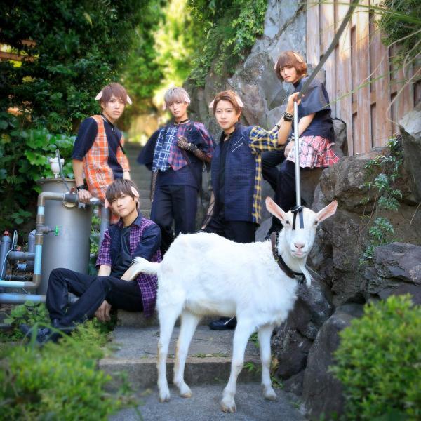 Thành viên mới nhất của nhóm nhạc idol Nhật Bản này là một anh... dê