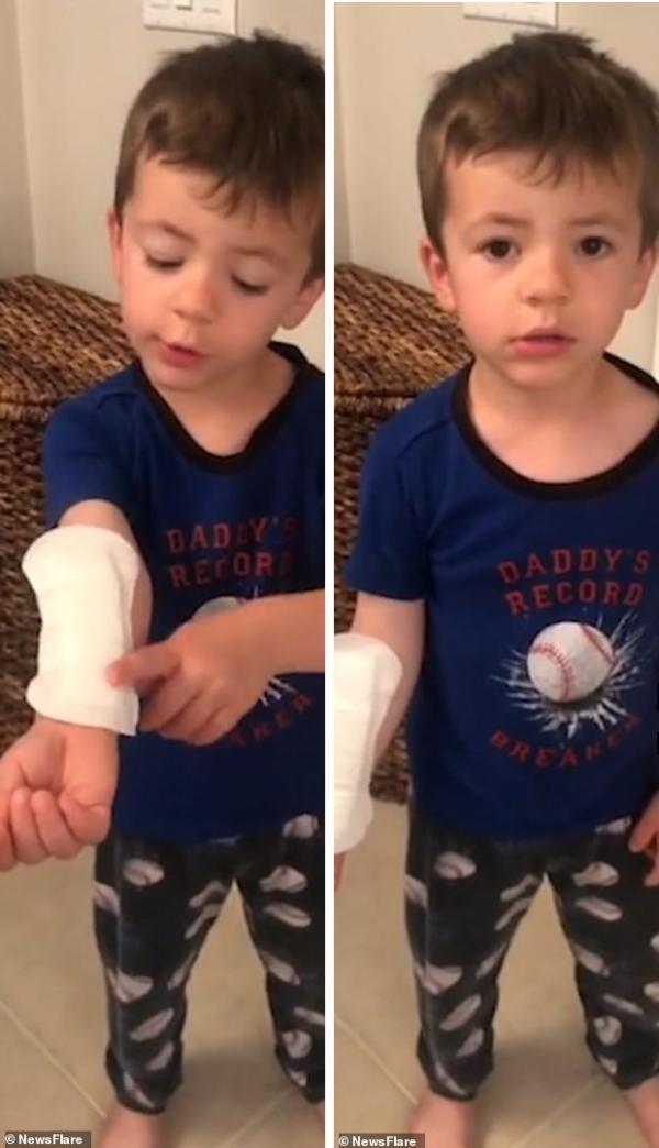 Cậu em trai mượn 'cứu cánh mùa dâu' của chị gái để sơ cứu vết thương