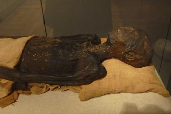 Bí ẩn xác ướp Ai Cập: Liệu lời nguyền từ lăng mộ Pharaoh Tutankhamun có thật sự tồn tại?
