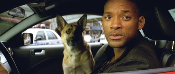 Website 'báo động' cho người xem khi phim có hình ảnh động vật chết