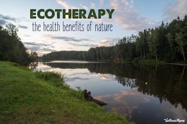 Liệu hòa mình vào thiên nhiên có giúp sức khỏe của bạn cải thiện hay không?