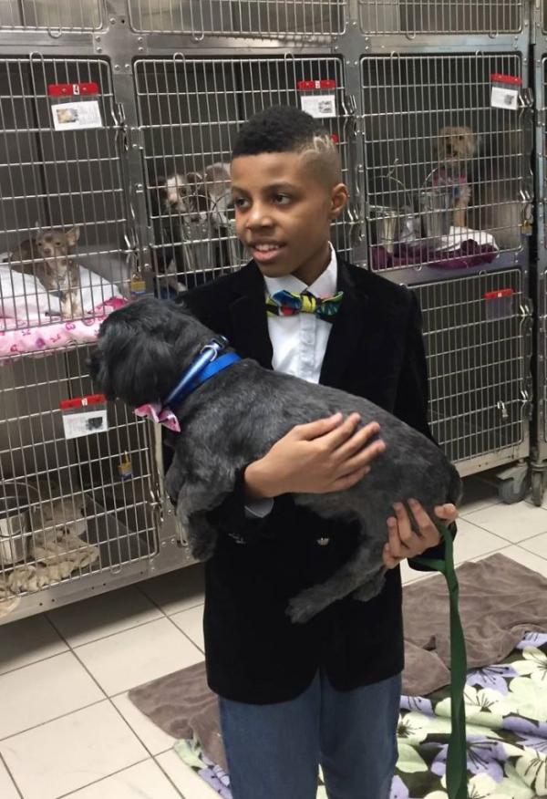 Bằng những chiếc nơ bướm sặc sỡ, cậu bé này đã giúp hàng trăm chú chó vô gia cư tìm được mái ấm mới