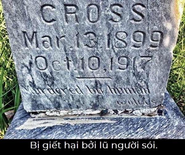 Nhói lòng những câu chuyện đằng sau dòng chữ được khắc trên bia mộ