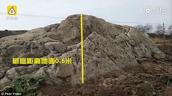 Hài hước ngọn núi nhỏ nhất thế giới: Chỉ cần bước 1 bước chân là đã lên tới... đỉnh