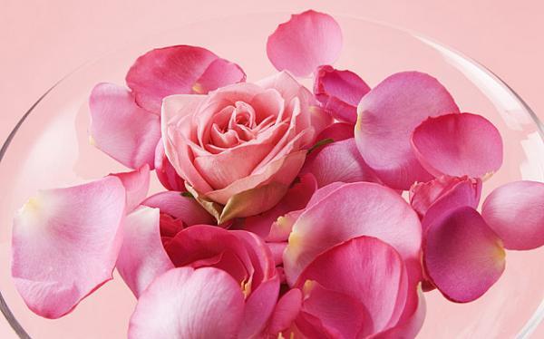 Công ty Pháp khiến cả thế giới sửng sốt khi bán loại thuốc biến mùi đánh rắm thành mùi hoa hồng?