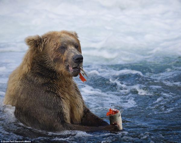 Người đàn ông Nga dần biến thành 'xác sống' sau một tháng bị giam giữ trong hang gấu