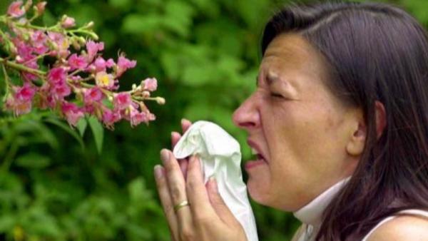 'Liều thuốc' cho chứng dị ứng phấn hoa rất đơn giản: Vaseline