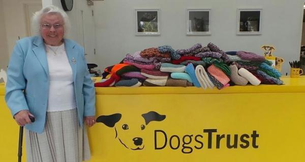 Cụ bà 89 tuổi miệt mài dệt 450 chiếc áo cho những 'người bạn 4 chân'
