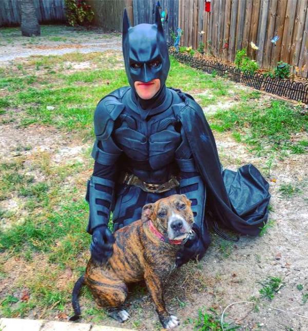 Batman đời thực không bắt tội phạm mà đi cứu những chú chó mèo bị bỏ rơi