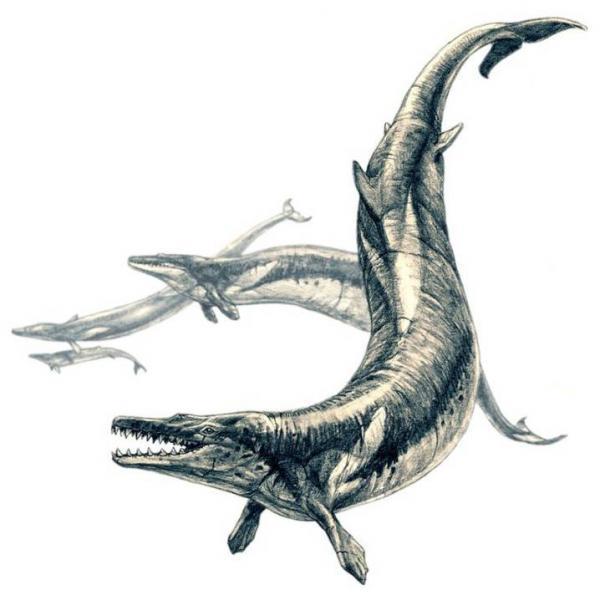 Loài động vật tuyệt chủng nào sẽ vô cùng đáng sợ nếu còn tồn tại đến ngày nay?