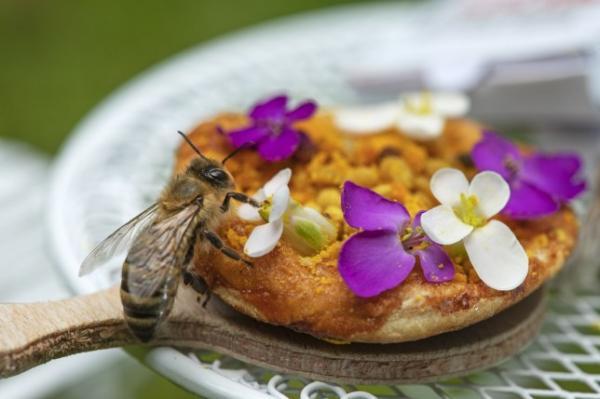Papa John's ra mắt món mới 'Beezza' - bé đến nỗi chỉ dành cho các chú ong