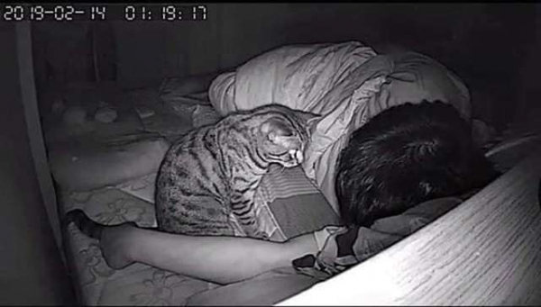 Nhờ camera ban đêm, con sen bất ngờ phát hiện ra 'hoàng thượng' đã tìm mọi cách thủ tiêu mình