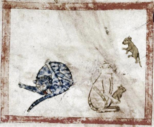 Mèo liếm mông là hình ảnh phổ biến trong các bản vẽ nghệ thuật thời Trung Cổ