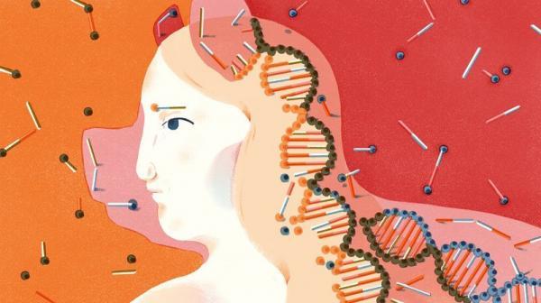 'Nhân thú' đã được các nhà khoa học Nhật Bản tạo ra