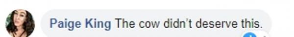 Cộng đồng mạng phẫn nộ khi anh nông dân gắn nhẫn kim cương lên 'ti bò' để cầu hôn bạn gái