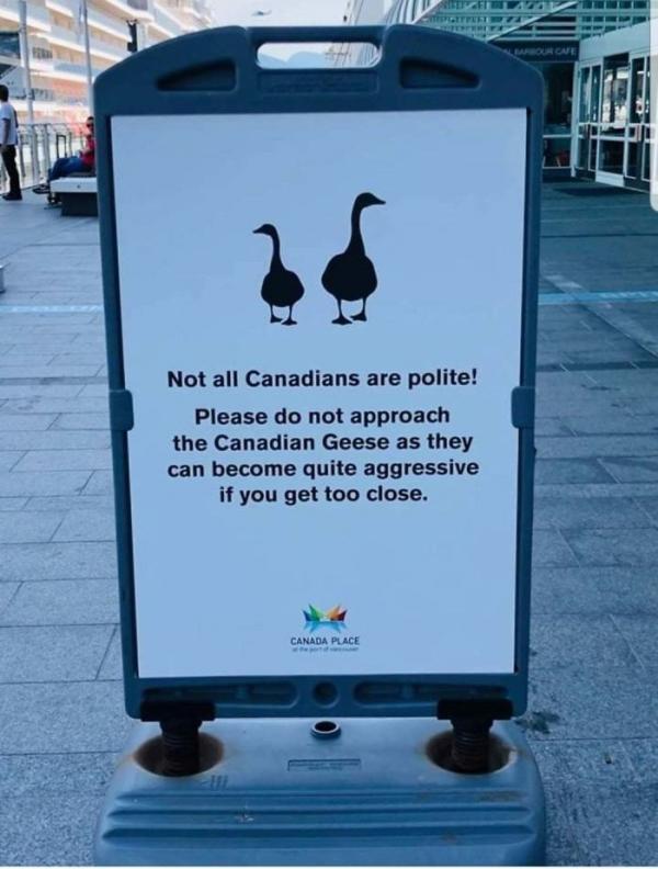 Những hình ảnh bạn chỉ có thể nhìn thấy ở 'hành tinh Canada'